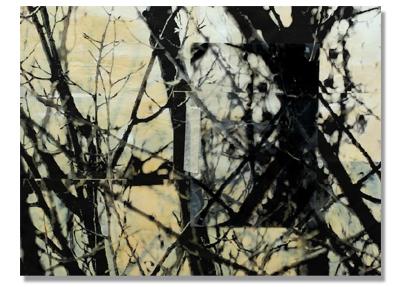 Ruben Tortosa. Secuencia Temporal I (detalle) (2010). Registro digital sobre lámina de látex. 75x112cm. © Galería Set Espai D´Art. ART Madrid 2011